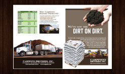 Carpinito Brothers Brochure Design